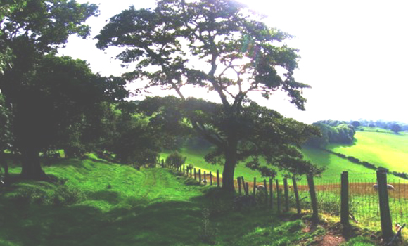 Picturesque walk