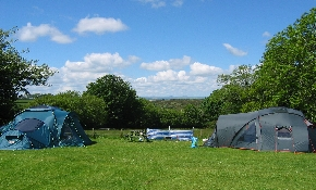 Camping pitches in main field