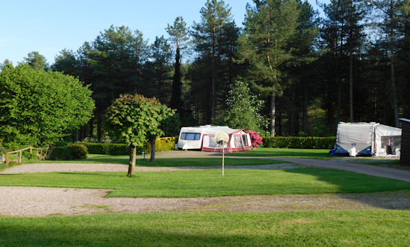 Original May Day Weekend Deanwood Caravan And Campsite Forest Of Dean