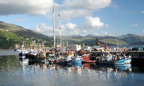 Ullapool harbour just 5 minutes walk
