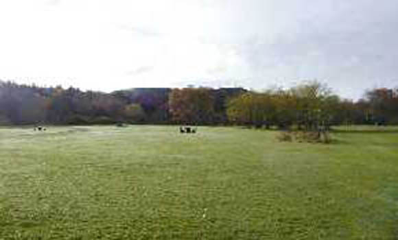 Main camping field with picnic tables